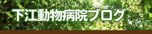 下江動物病院BLOG